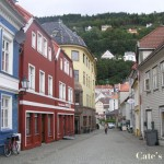 Travel Post: Norway Part 4: A glimpse of Bergen