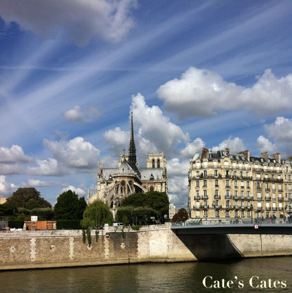 Yes, I walked along the Seine again.