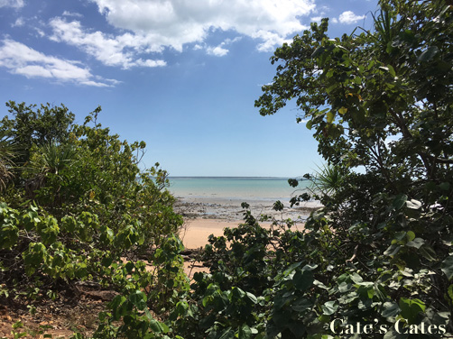 The beach at Fannie Bay, just outside the Museum and Art Gallery of the Northern Territory